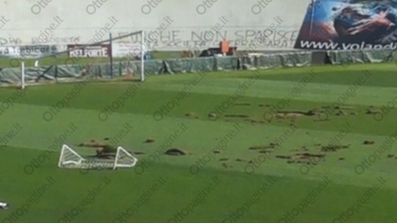 http://stadiums.at.ua/_nw/215/94130728.jpg