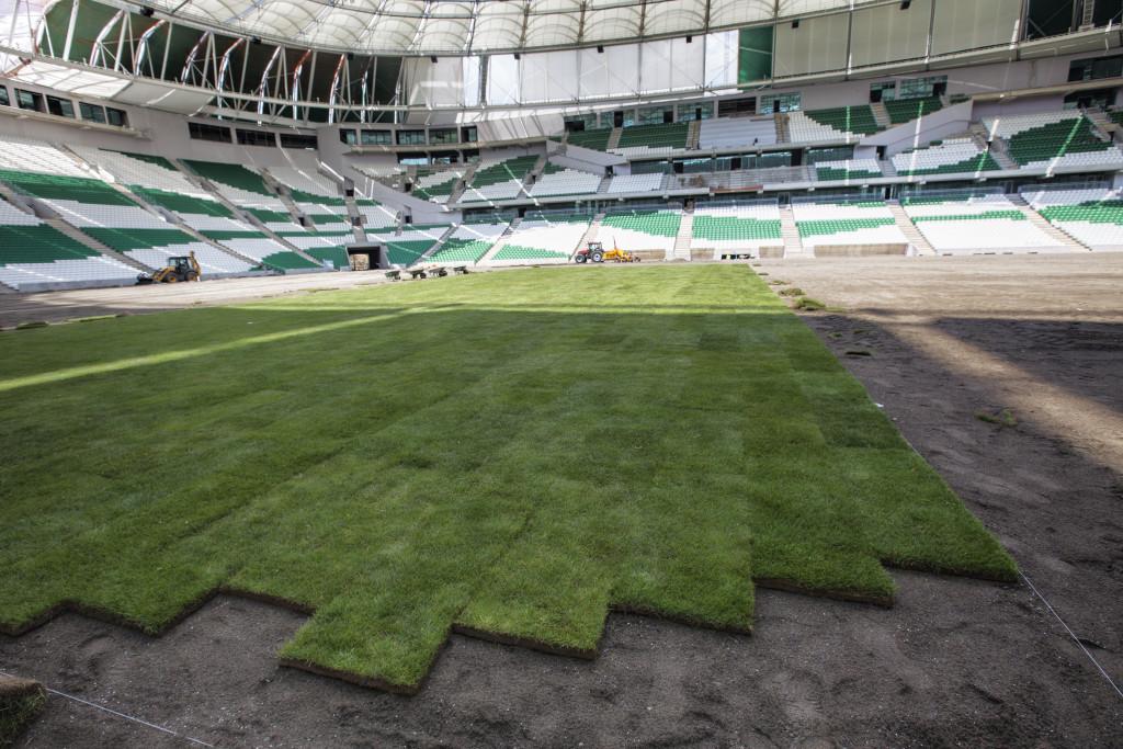 http://stadiums.at.ua/_nw/225/58971610.jpg