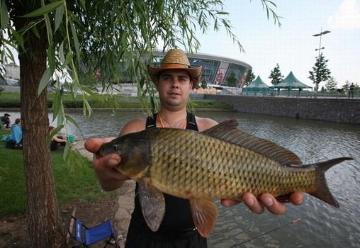 как ловить рыбы в донецкой области